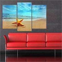 Canvastablom Ü81 Deniz Yıldızı Parçalı Kanvas Tablo