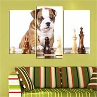 Canvastablom Ü179 Sevimli Köpek Parçalı Tablo