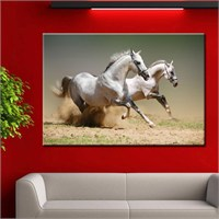 Canvastablom T57 Horse Canvas Tablo