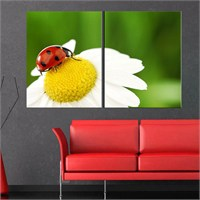 Canvastablom İ50 Papatya Çiçeği Üstüne Uğur Böceği Kanvas Tablo