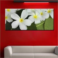 Canvastablom Pnr116 Beyaz Çiçekler Kanvas Tablo