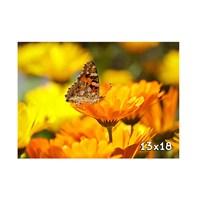 Maslak Foto 13X18 Cm Mat Digital Fotoğraf Baskısı