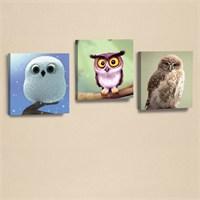 Dekorjinal 3'Lü Baykuş Kanvas Tablo Seti Beyaz Baykuş -D-Pel020