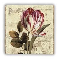 Oscar Stone Vintage Tulip Taş Tablo