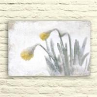 Fotocron Sarı Çiçek Tablo 24X34 Cm