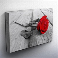 Rose On Wood Bw Kanvas Tablo 75X50cm