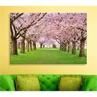 Çiçek Açan Ağaçlar Dekoratif Kanvas Tablo