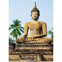 Sukhothai Duvar Kaplaması 4 Parça / 183 X 254 Cm
