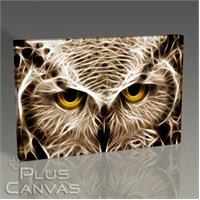 Pluscanvas - Closeup Owl Tablo