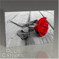 Pluscanvas - Red Rose On Wood Tablo