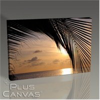 Pluscanvas - Sunset And A Palm Tree Tablo