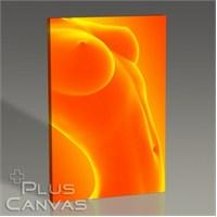 Pluscanvas - Orange Beauty Tablo