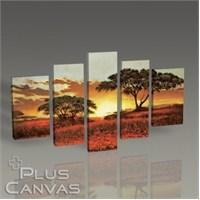 Pluscanvas - Serengeti Iı Tablo