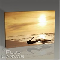 Pluscanvas - Sunset Tablo