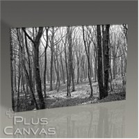 Pluscanvas - Kerem Soyoz - Spring Trees Tablo