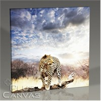 Pluscanvas - Tiger Tablo