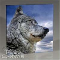 Pluscanvas - Wild Wolf Tablo