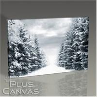 Pluscanvas - Snowy Road Between Trees Tablo