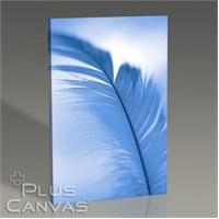 Pluscanvas - Feather Tablo
