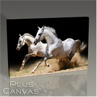 Pluscanvas - White Horses Tablo