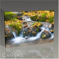 Pluscanvas - Watersmooth Tablo