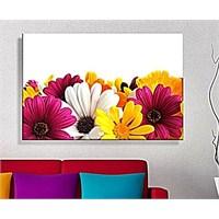 Sarı Pembe Çiçekler Dekoratif Kanvas Tablo
