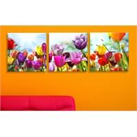 Renk Renk Çiçekler 3 Parçalı Tablo Saat
