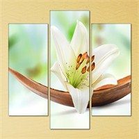 Tabloshop - Nature Lilies 3 Parçalı Kanvas Tablo 94X90cm