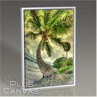 Pluscanvas - Palm On The Beach Tablo
