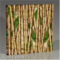 Pluscanvas - Bamboo Iı Tablo