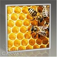 Pluscanvas - Bees On Honeycomb Tablo