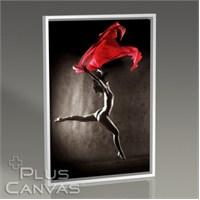 Pluscanvas - Red Tablo