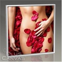 Pluscanvas - Beauty İn Roses Tablo