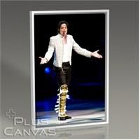 Pluscanvas - Michael Jackson - History Tour Tablo