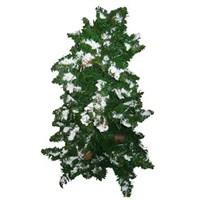 Kozalaklı Noel Çam Ağacı 60 cm