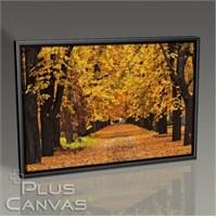 Pluscanvas - Autumn Colors Tablo