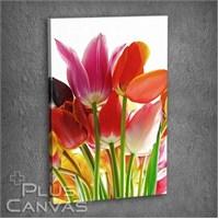 Pluscanvas - Flower Vııı Tablo