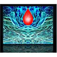 Kan Damlası Kanvas Tablo