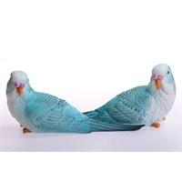 Miss Gaya İkili Mavi Muhabbet Kuşu