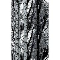 d-c-fix Dekor Wood Yapışkanlı Folyo
