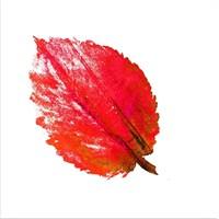 Kırmızı Çizim Yaprak Kanvas Tablo