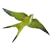 Koyu Yeşil Renkli Üçlü Kırlangıç