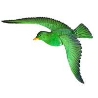 Yeşil Renkli Martı 2Li Set