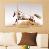 Dekoriza Beyaz Koşan At 3 Parçalı Kanvas Tablo 80X50cm