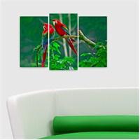 Dekoriza Papağanlar 3 Parçalı Kanvas Tablo 80X50cm