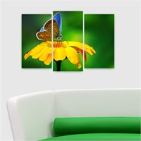 Dekoriza Sarı Çiçek & Kelebek 3 Parçalı Kanvas Tablo 80X50cm