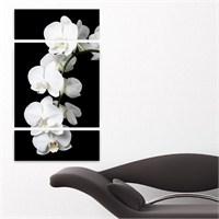 Dekoriza Beyaz Orkideler Kanvas Tablo 3 Parçalı Kanvas Tablo 70X125cm