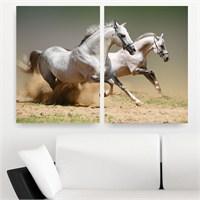 Dekoriza Beyaz Atlar 2 Parçalı Kanvas Tablo 102X70cm