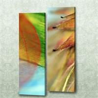Dekorjinal 2 Li Dikdörtgen Kanvas Tablo Seti Sel017