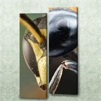 Dekorjinal 2 Li Dikdörtgen Kanvas Tablo Seti Sel021